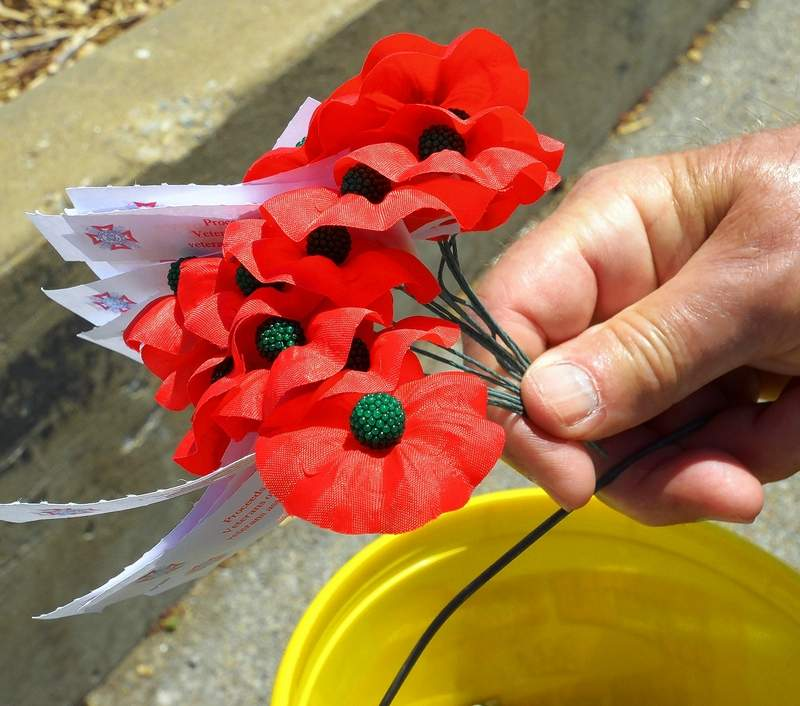 By Buying Poppies Marion Supports Men And Women In Uniform