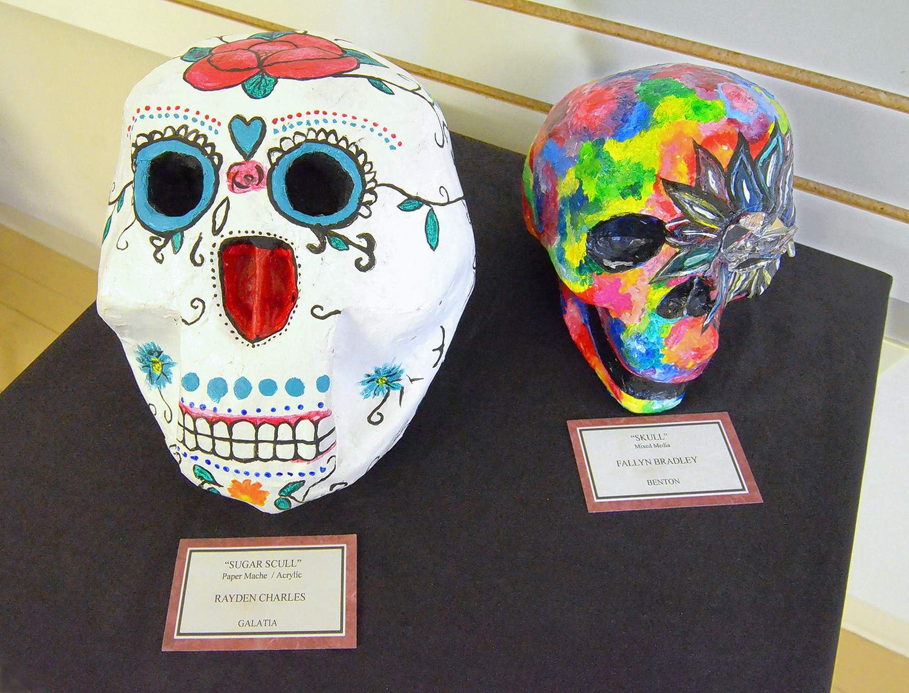 These two sculptures are among the more unique pieces in the show. The one on the left is a paper mache and acrylic creation by Ayden Charles of Galatia High School. The one on the right is a mixed media piece by Fallyn Bradley of Benton High School.