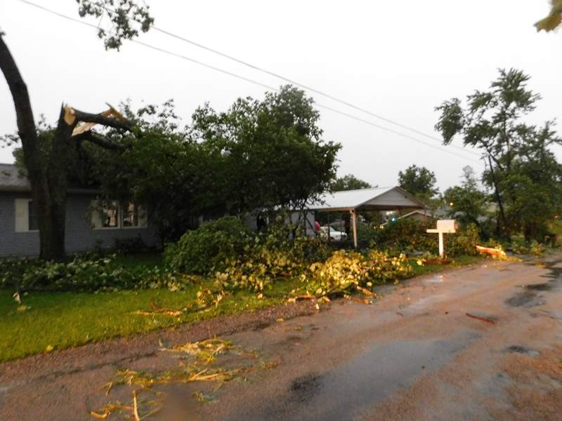 High winds snapped this tree, that landed on top of a home on Hobbs Street in Johnston City.