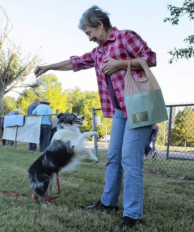 Geoff Ritter photoJane Adams, president of the Friends of Carbondale Dog Parks board of directors, plays with Hula, her Australian shepherd.