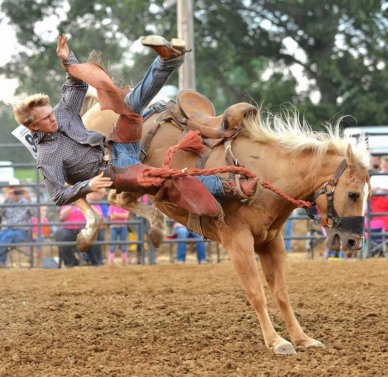JEFF JONES FILE PHOTOCoy Kennedy of Ozark is ejected during his attempt at saddle bronc riding at the 2017 Saline County Fair.